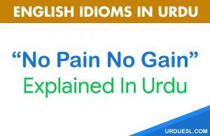 No Pain No Gain Meaning In Urdu