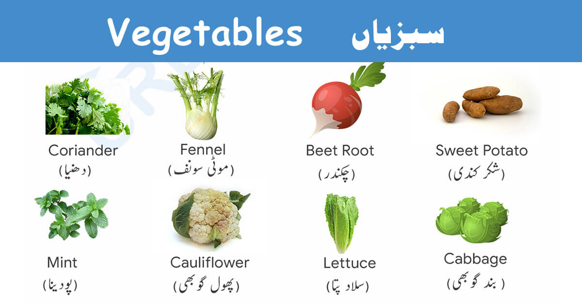 Vegetable Names in English and Urdu with Pictures – Download Pdf