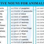 List of 70+ Collective Nouns for Animals and Birds
